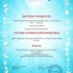 Насекомые-Попова П.-001