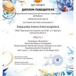 Фейерверк-Барышева Алина-001