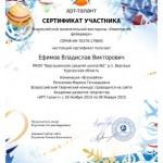 Фейерверк-Ефимов Влад-001