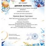 Фейерверк-Ефимов Денис-001