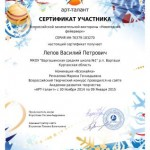 Фейерверк-Лепов Василий-001