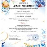 Фейерверк-Прокопьев Евгений-001