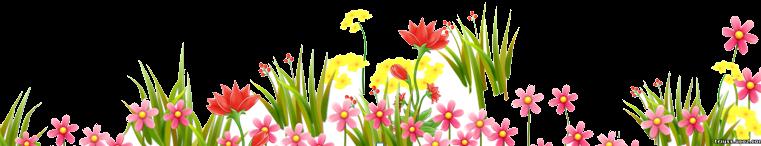 цветыб
